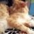 Zdjęcie profilowe Kociacek2009