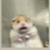 Zdjęcie profilowe Winko