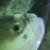 Zdjęcie profilowe Maja 🐝