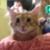 Zdjęcie profilowe SmokKresu3