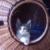 Zdjęcie profilowe olcia