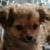 Zdjęcie profilowe Staniek