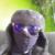 Zdjęcie profilowe QuantumART