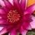 Zdjęcie profilowe S_Anna